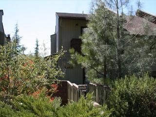 Nice tri-level condo- golf, tennis, Dish TV, fireplace, a/c, & INTERNET - Groveland vacation rentals