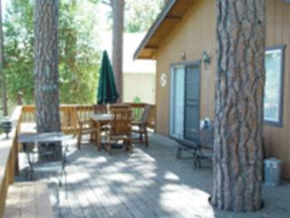 Secluded home in the trees-near activities, deck, A/C, fireplace, kitchen - Groveland vacation rentals