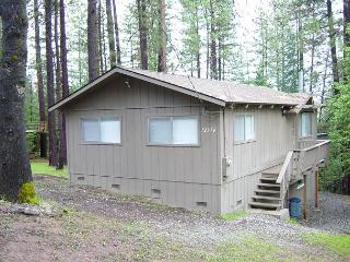 Cozy cabin nestled in the pines- walk to marina, fireplace, game table - Groveland vacation rentals