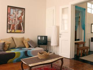Pink House - Ideal for Big Groups - Istanbul vacation rentals