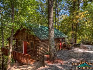 Squirrel Run Log Cabin - Bryson City vacation rentals