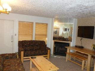 Wolf Lodge condo in Eden near Powder Mountain & Snowbasin - Eden vacation rentals