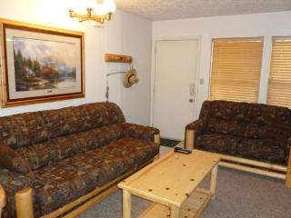 1 BR Vacation Condo Near Powder Mountain & Snowbasin - Eden vacation rentals