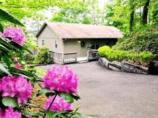Motorcycle Access and a Hot Tub Just Outside of Bryson City -- Big Oaks Pointe - Bryson City vacation rentals