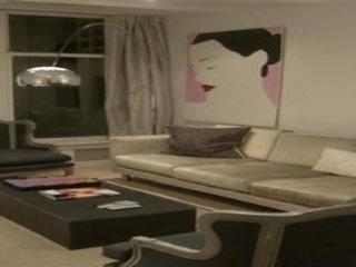 The Chandeliere Apartment - Amsterdam vacation rentals