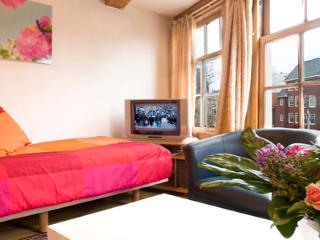 Downtown Dreams - Amsterdam vacation rentals