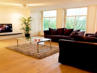 Business class apartment - Amsterdam vacation rentals