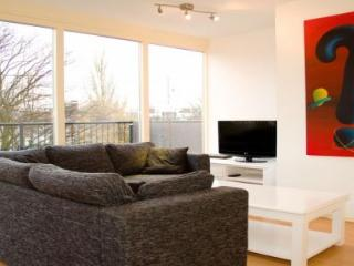 Half Moon Apartment - Amsterdam vacation rentals