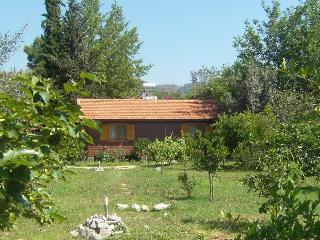 Holiday house Dilek in a orange garden near beach - Cirali vacation rentals