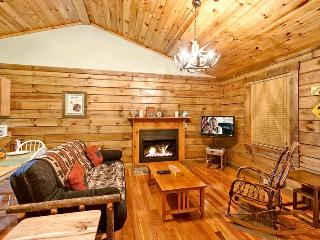 BEARADISE - Sevierville vacation rentals