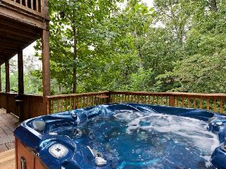 A WONDERFUL LIFE - Sevierville vacation rentals