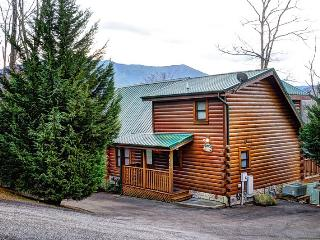 BEARFOOT LODGE - Sevierville vacation rentals