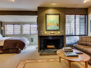 Cottonwood Modern Studio Condo - Central Idaho vacation rentals