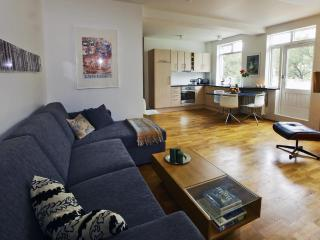Beautiful home - Reykjavik vacation rentals