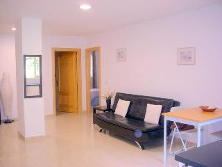 SUPERB 1 BEDROOM APARTMENT, LA CARIHUELA, MALAGA - Malaga vacation rentals