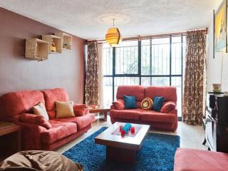 Spacious Excellent Value 3 Bdrm Coyoacan Del Valle - Mexico City vacation rentals