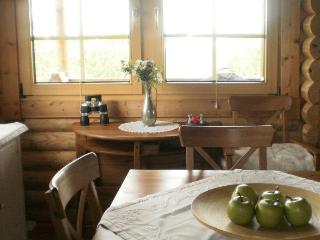 A log cabin at the river bank (Golden Circle)! - Selfoss vacation rentals