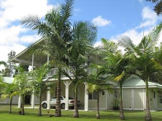 Mountain Breeze Cottage 2 bedroom Near Volcano! - Mountain View vacation rentals