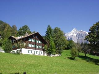 Holiday apartment in Chalet ALPENRUHE - Jungfrau Region vacation rentals