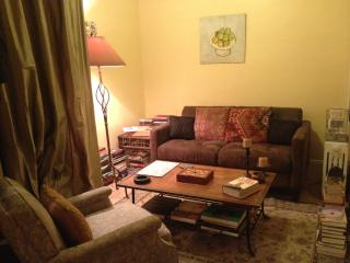 1 Bdrm For Those on a Tight Budget. - Flushing vacation rentals