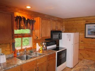 Baron's Bungalow on Little Spider Lake - United States vacation rentals
