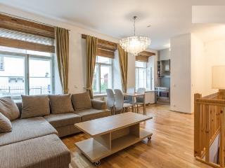 Old Town 6 BED with SAUNA. PARKING nearby - Tallinn vacation rentals