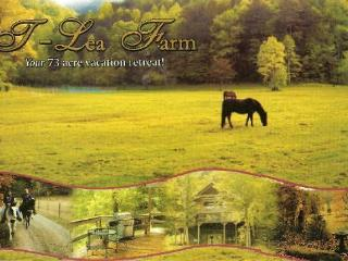 T Lea Farm - Tellico Plains vacation rentals