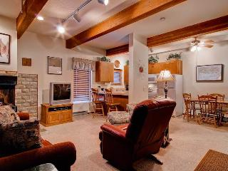 Christophe Condominium 501 - Ketchum vacation rentals