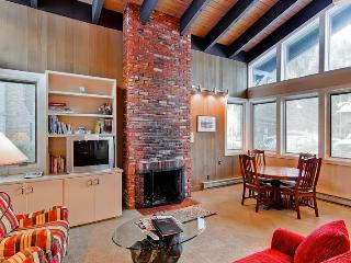 Prospector Condominiums 171 - Ketchum vacation rentals