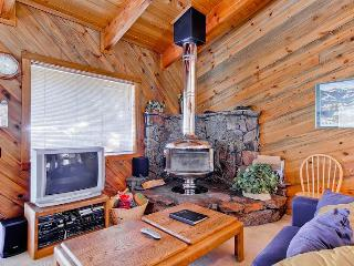 Smokey Plaza Condominium 1 - Ketchum vacation rentals