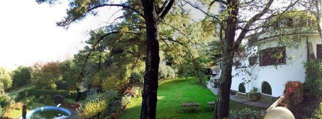 Villa and pool, second and third levels of the garden - Minutes from Rome! 3 bds unit in villa with pool - World - rentals