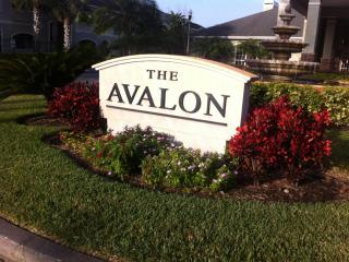 Beautiful  & Tranquil Condo,  Avalon  Clearwater - Clearwater vacation rentals