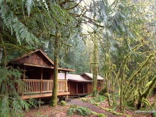 The Alderwood Cabin - Rhododendron vacation rentals