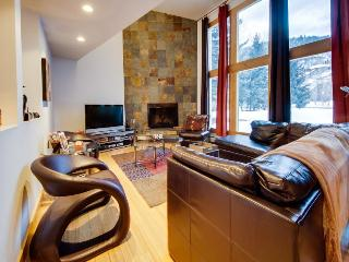 Eagle-Vail Ski/Golf Retreat - Beaver Creek vacation rentals