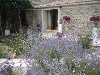 Converted barn  canal du midi  near Carcassonne - Homps vacation rentals