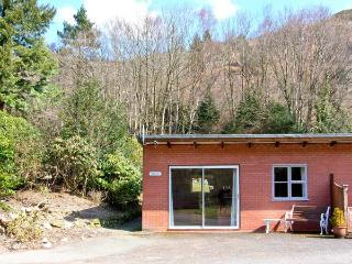 TROUT COTTAGE all ground floor, one bedroom, near to river in Llanwrthwl Ref 22184 - Llanwrthwl vacation rentals