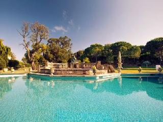 Mas Cruanyes Villa, pool, beautiful artwork and extensive gardens with pavilion - Girona vacation rentals