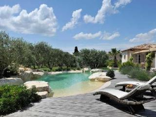 Mas de la Verdiere - Lovely Gated Villa in Tranquil Setting with Swimming Pool - Saint-Remy-de-Provence vacation rentals