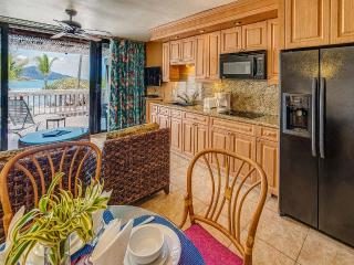 Sapphire Fully Renovated - East End vacation rentals