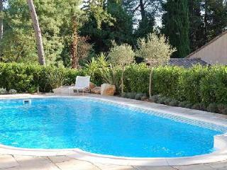 Romantic Villa Racine has vast private gardens with pool and outdoor dining - Valbonne vacation rentals