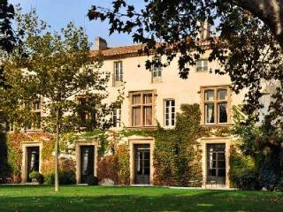 Chateau Molyneux, France - Avignon vacation rentals