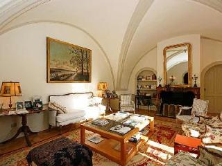 Historic Chateau Molyneux with Private Pool, Alfresco Dining & Daily Maid - Ideal for Large Groups - Avignon vacation rentals