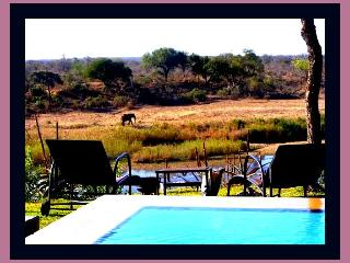 Hippo Hills - Kruger National Park Boundary - Mpumalanga vacation rentals
