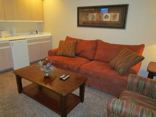 Suite Memories- 1 Bedroom Condo located in Thousand Hills Champions Resort - Branson vacation rentals