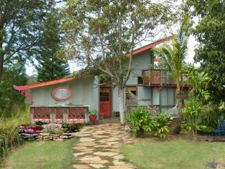 Sweet 2BR Ocean View Home Above Rainforest Canopy - Kihei vacation rentals