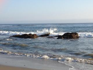Malibu Condo, on beach to dive, surf, sun, & play. - Malibu vacation rentals