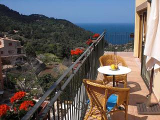 Apartamento montaña vistas al mar - Estellencs vacation rentals