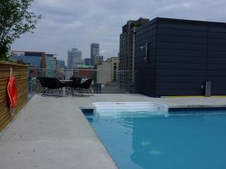 New fully-furnished apt for rent downtown Montreal - Montreal vacation rentals