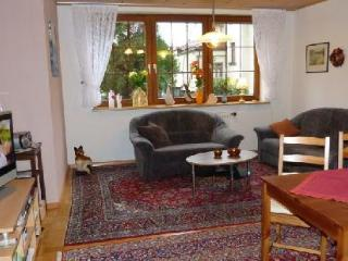 Vacation Apartment in Steinach (Baden-Wuerttemberg) - 646 sqft, bright, well-maintained, comfortable… - Steinach vacation rentals