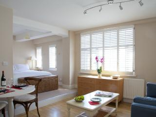 Nell Gwynn House Studio, Sloane Avenue, Chelsea. - London vacation rentals